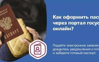 Замена паспорта через Госуслуги: как записаться в паспортный стол через интернет
