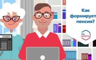 Как проверить пенсионные накопления и посмотреть свою пенсию через Госуслуги