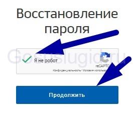 Могут ли на сайте госуслуг заменить пароль без меня